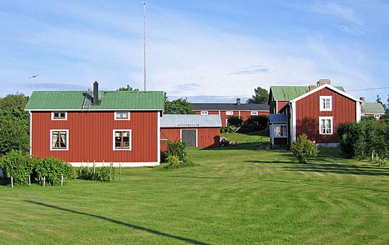 Grönmålade plåttak på Holmön. Foto  Lena Tengnér. 95aa329b05a13